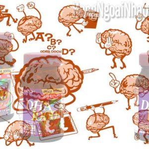 Top 3 loại thuốc bổ não tốt nhất của nhật