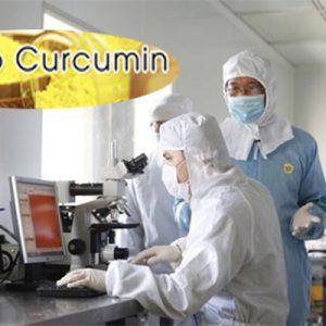 Nano curcumin gold có tốt không? Review từ chuyên gia