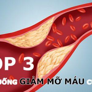 Thuốc giảm mỡ máu của Mỹ loại nào tốt nhất?