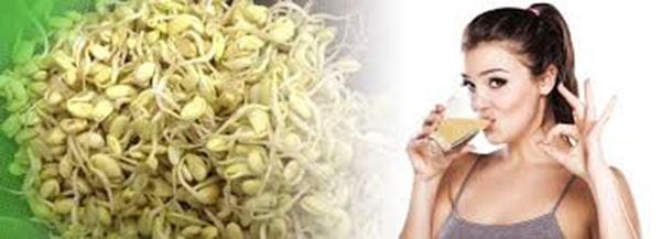Uống mầm đậu nành có tác dụng gì? Có thể bạn chưa biết 2