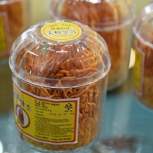 Cách sử dụng đông trùng hạ thảo khô Hàn Quốc-2