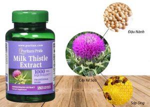 Thuốc Milk Thistle Extract có tác dụng gì?-1